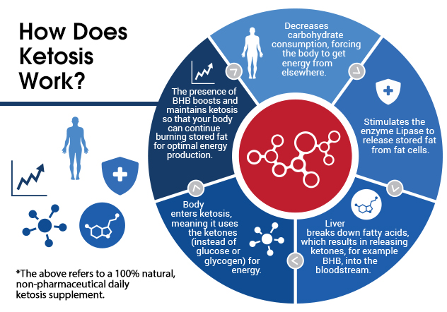 Info graphic that explains how ketosis (keto) works